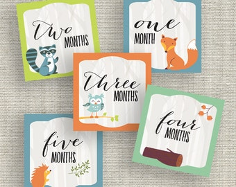 Printable Woodland Creatures Baby Milestone Tags