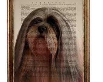 Lhasa Apso Dog, beautiful Art Print on Upcycled Dictionary Book page 8'' x 10'' inches