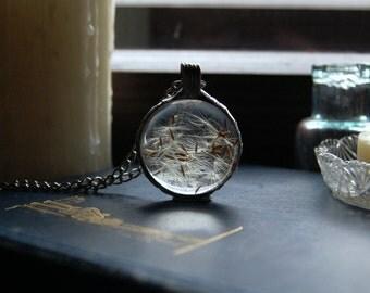 Round DANDELION terrarium, WISH necklace, make a wish, terrarium pendant, terrarium jewelry, mother's day gift, dandelion jewelry. botanical