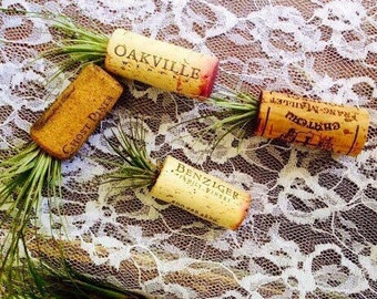 Air Plant Magnets- Wine Cork Wedding Favors (5)