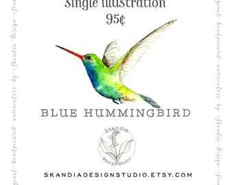 Hummingbird clipart, handpainted clipart, watercolor clipart, bird clipart, garden clipart, hummingbird png, bird png, hummingbird print