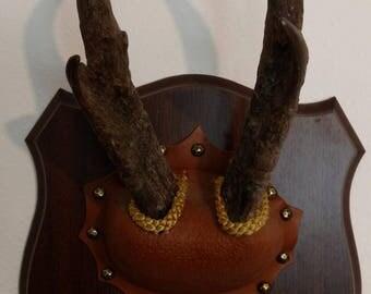SALE Pronghorn Antelope Horns/Antlers Trophy Wall Mount Plaque
