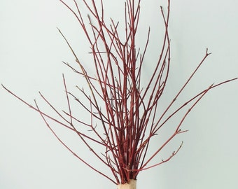 "UNAVAILABLE UNTIL FALL 2017:  Red Dogwood Branches Bundle of 25 Red Wood Sticks Red Dogwood Sticks 12""-26"" Holiday Decor"