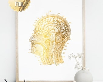 Greys Anatomy Gift for Doctor, Medical Sudent Gift, Gold Foil Print, Neuroscience Anatomy Art, Science Art, Science Poster, Brain Print