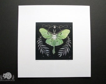 Luna Moth // Thread and Ferns // Loose Print