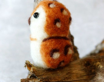 Needle felted Owl Allocco
