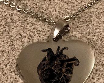 Sterling Silver-Necklace-Anatomical--heart-metal-high quality-gift-round-engraved-cardiac-nursing-nurse-rn-medicine-medical-science-human