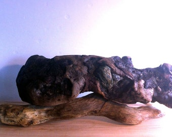 Wabi Sabi Decor Driftwood  Sculpture With Embedded Sea Stones