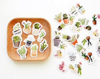 Mini Potted Succulent Plant Stickers Set of 45 / Watercolor Planner Stickers / Scrapbook Stickers/ Cactus Plant Stickers/