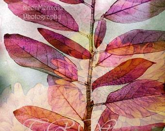 Autumn Leaves Print,Autumn Leaves,Autumn Art,Giclee Print,Landscape,fall,Nature,Closeup, Photogrpahy,Magenta,Pink,Orange,Fine Art,Leaves,Zen