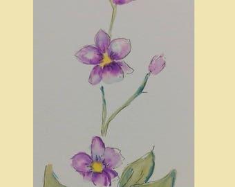 La flaca (skinny girl). Mexican orchid by Uriel Carreto-Salgado watercolor painting. Author painting.