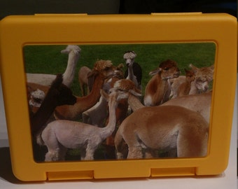 Lunch box. Alpaca. -The ideal gift baptism!