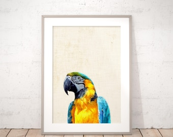 Macaw Parrot Digital Art Print Nursery Jungle Animal Wall Art Printable Animals Neutral Kids Room Decor Baby Shower Gift Instant Download