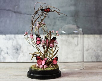 Butterflies in a Glass Dome - Miniature Artificial Butterfly - Natural History - Home Decor - 2.75 x 1.73 inches / 7 x 4,4 cm