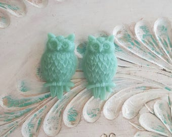 Cottage Chic Teal Owl Plugs Gauges Stretched Ears 10g 2.5mm, 8g 3.2mm, 6g 4mm  p14