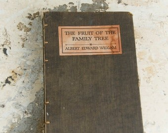 1924 FAMILY TREE Vintage Ancestry Notebook