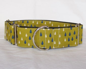 SALE Rain Drops Martingale Dog Collar - 1.5 or 2 Inch - blue green cream showers water drops