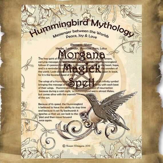 Hummingbird Mythology