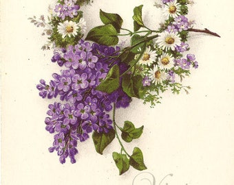 Daisy & Violet Wreath Antique French Postcard, Chromolithograph Flower Botanical Post Card from Vintage Paper Attic
