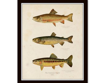 Vintage Trout Print No. 1, Giclee, Fish Art, Fly Fishing, Cabin Decor, Angler Art, Fish Print, Art Print, Illustration, Collage, Trout Print