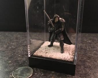 Jon Snow  - 2.5 inch Decorative Diorama Case