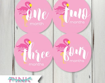 Flamingo Monthly Baby Milestone Stickers Baby Girl Pink Flamingo Bodysuit Months 1-12, 13-24 Baby Shower Gift Preppy Cute Classy Beach Style