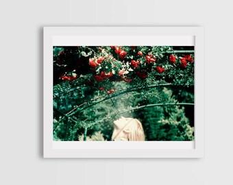 photos of roses, summer photos, woman portrait photography, canvas photo prints, wall art decor, summer flower photos, fine art photography