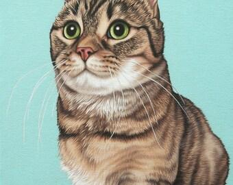 Custom Painted Pet Portrait, 16x16 Munchkin Cat Painting, Munchkin Cat Portrait, Gift for Cat Lover, Munchkin Cat Art, Cat Lover Mom Gift