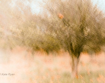 Abstract, Dreamy, Nature Print, Landscape Photo, Impressionism, Trees, Neutral, Orange, Modern Home Decor, Wall Art, Bedroom Art, Office Art