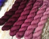 Gradient Fingering Yarn Set Berry Frost to Deep Wine