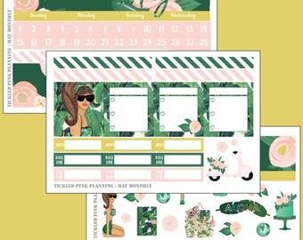 MAY MONTHLY KIT   Planner Stickers Erin Condren