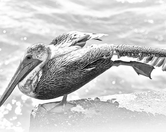 "Ocean Inspired, Pelican, stretching, digital home decor ""YOGA PELICAN"""