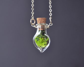 Moss Necklace, Terrarium Necklace, Live Moss, Plant Necklace, Glass Terrarium Necklace, Drop Shape Necklace, Moss Jewelry, Green Moss