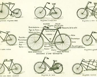 1897 Vintage Bike print. Antique Cycle illustration Original Larousse print 115 YEARS OLD