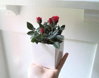 Cube planter, small black planter, ceramic square planter, white home accent