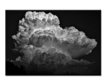Energy - Nature Photography Print