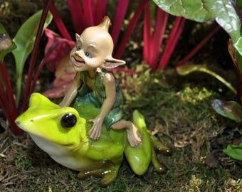 Garden Pixie Riding Frog
