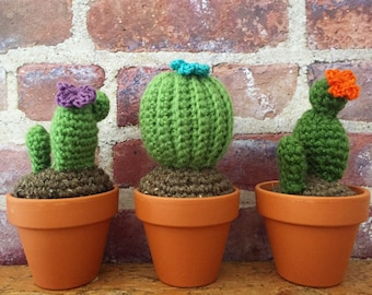 Crochet cactus, crochet succulent, made to order - International Shipping