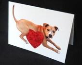 Dog Heart Glitter Valentine's Day Card, Pit Bull Love, Glitter Card