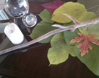 Natural wood wand washed up from the Lake, the magic of nature, magic rites, handle protected by natural overhang
