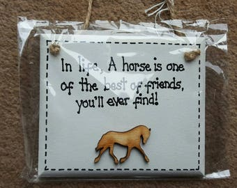 "Horse Owner ""In, life, a horse is one of the best friends you'll ever find"" Humor Funny Plaque"
