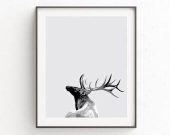 Wall Art Deer Head | Nursery Art Stag | Stag Head Wall Print