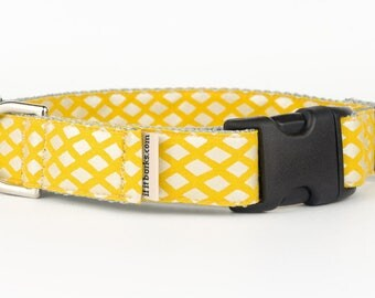Sunshine Trellis Martingale Dog Collar, Lemon, Yellow