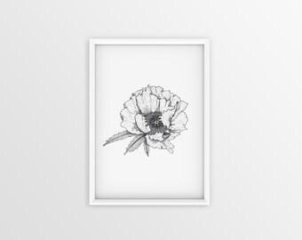 Poppy print A4 wall art, black and white, dotwork, interior wall art, nature print