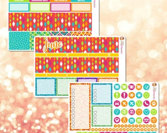 June Monthly Kit, March Monthly View Sticker Kit for Erin Condren Life Planner - 106 stickers!