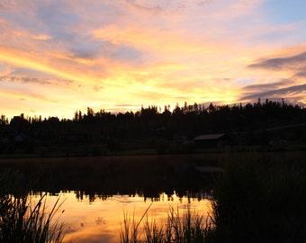 Morning Reflection (FRAMED PRINT)