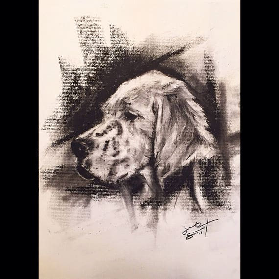 Custom Pet Portrait - Charcoal on Paper - Various Sizes Available