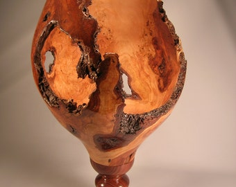 Cherry Burl Brandy Glass