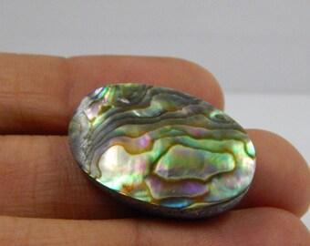 24.6cts Natural Abalone Shell Cabochon, Paua Shell Cabochon, Natural Seashell Bead FF6580