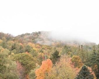 Blue Ridge Parkway - Foggy Fall Morning 1/4 - Horizontal